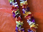 Tutti-Frutti Lei (Multicolored)