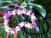 Hawaiian Double Orchid Lei