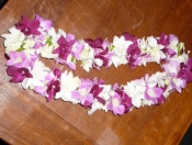 Double Mixed Purple with Tuberose Lei