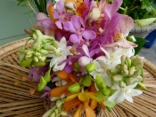 Colorful tropical wedding bouquet - Mixed orchids with tuberose