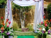 Tropical Bridal Arbor