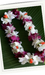 Graduation Leis – Hawaiian & Thai Orchids