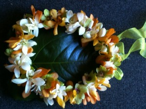 Home Photo 1-Lei