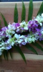 2014 Graduations – Order Your Hawaiian & Thai Orchid Leis Now!