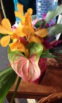 Easter and Mother's Day Bouquets – Order Now!